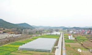 【七彩辉煌看玉山之二】玉山发展大农业让沃野生金